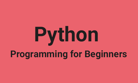 <strong>Beginners Python for Middle & High School </strong>