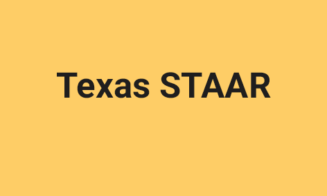 <strong>The Texas STAAR Assessment</strong>