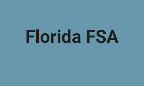 <strong>The Florida Standards Assessments (FSA)</strong>